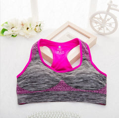 Shockproof Push Up Seamless Sports Bra