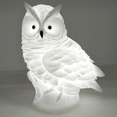 FREE Owl Night Light