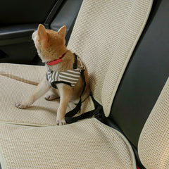 FREE Dog Car Seat Belt Safety Leash