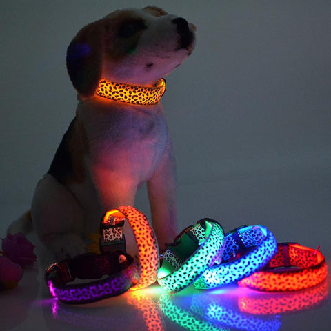Pet LED Fluorescent luminous Leopard dog collar - Free Plus Shipping Promotion
