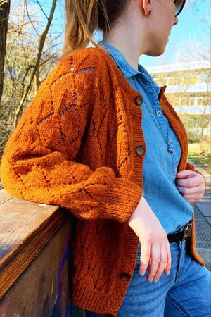 Leaf Cardigan by The Knit Stitch - wool package