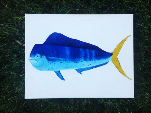 A Fish So Nice... Blue Decor