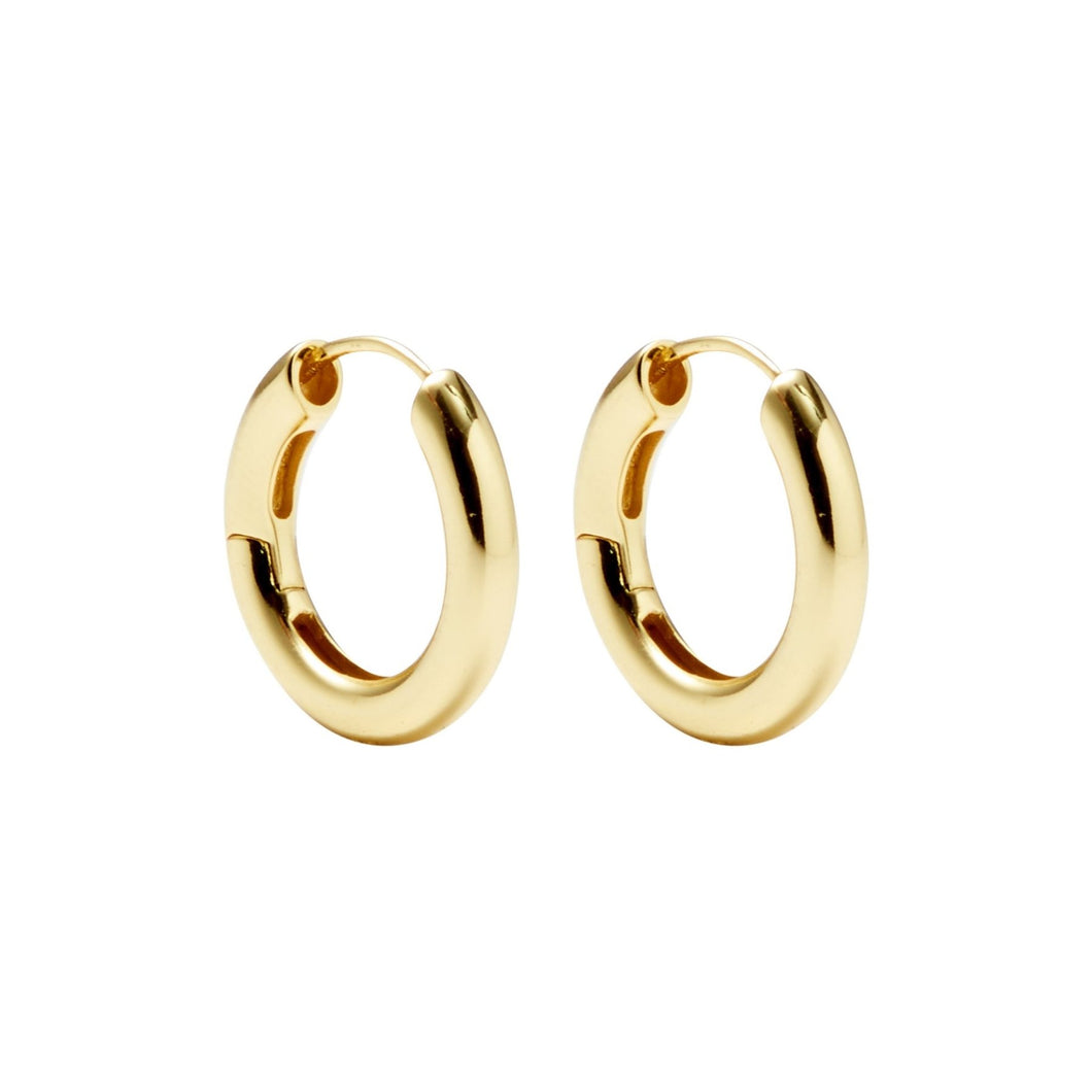 Gold Hinge Hoops