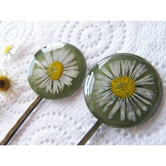 Pressed Daisy, Hair Pins,  Bobby Pin, Set of 2, Botanical, Woodland, Nature, Eco Friendly