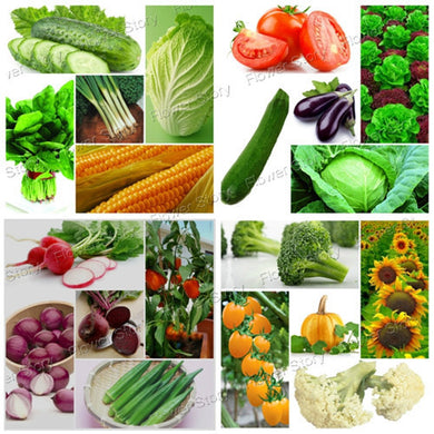 4500 Pcs Vegetable Fruit Survival Heirloom Fresh Seeds 20 Varieties Pack Easy to Grow