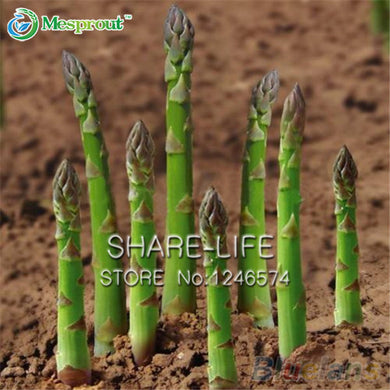 50pcs/pack Asparagus Seeds Organic Heirloom Rare Green Vegetable Home Garden Very Easy Seeds Free Shipping
