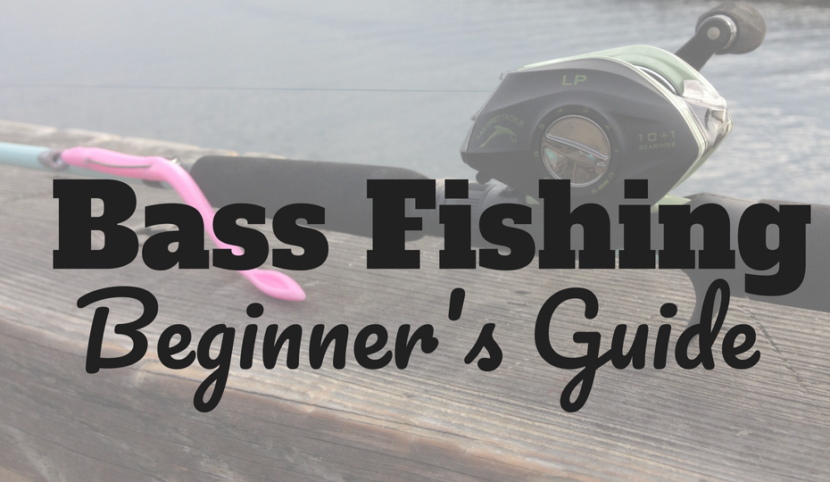 Bass Fishing Beginners Guide: Learn How to Catch Bass