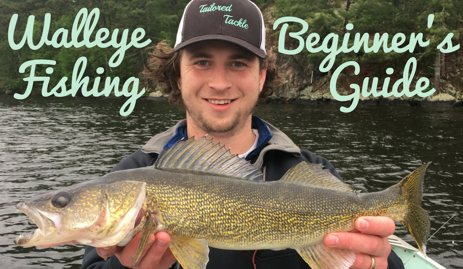 How to Catch Walleye: Beginner's Guide on Walleye Fishing