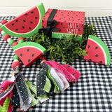Watermelon Bundle DIY or BIY