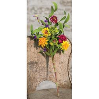 Mixed Prairie Daisy Spray - 18""