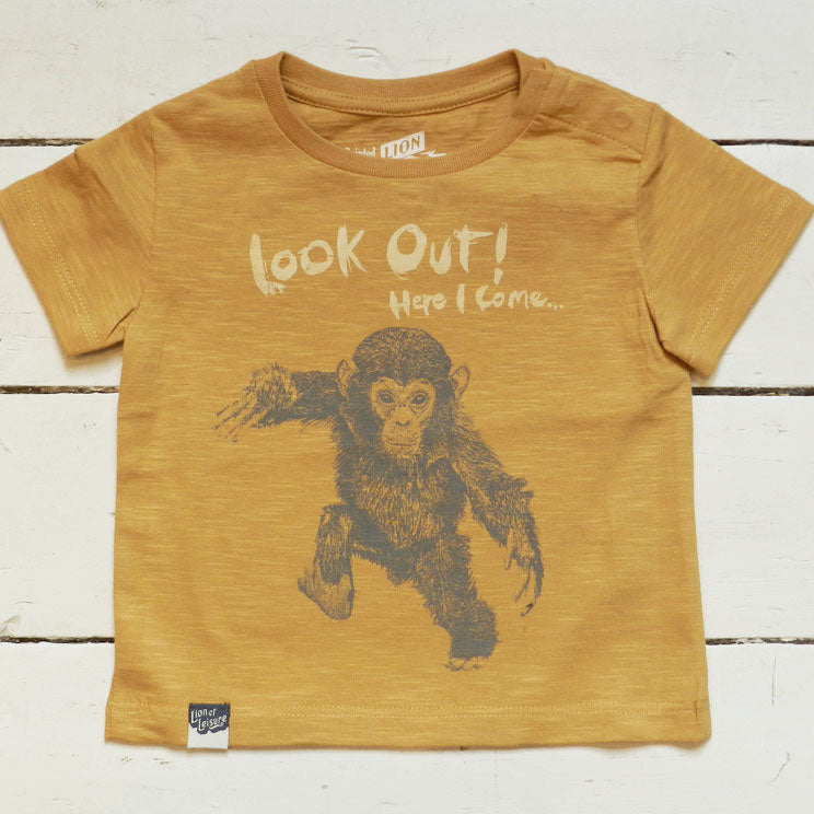 CHIMP - Look out ! Here I come ...