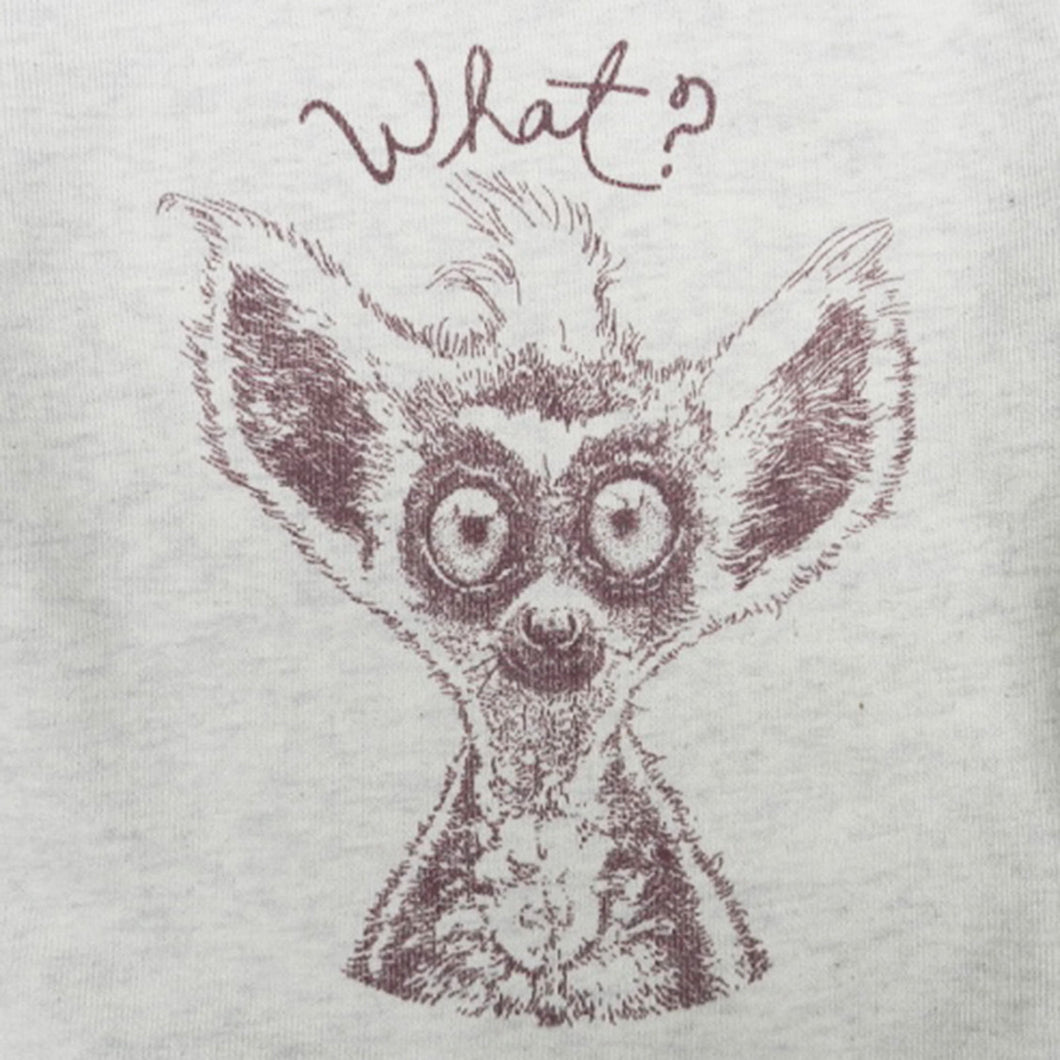 LEMUR - What ?