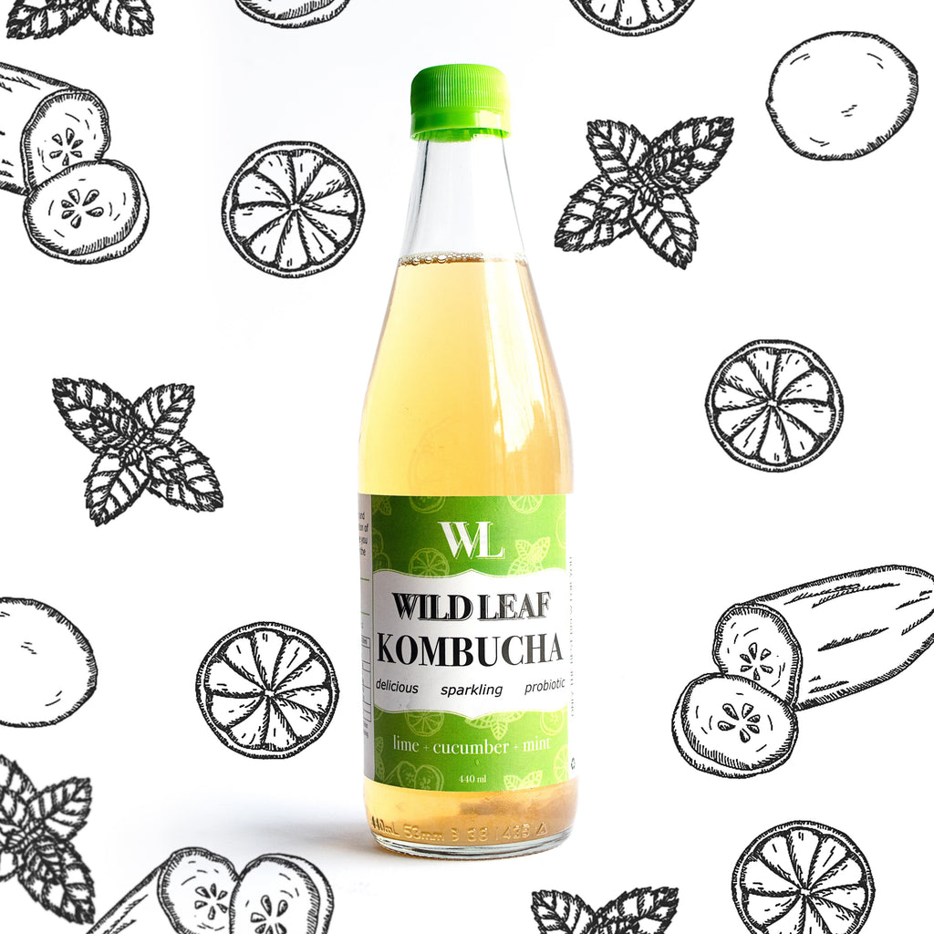 Lime Cucumber Mint - Wild Leaf Brew Kombucha