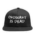Ordinary is Dead Snapback
