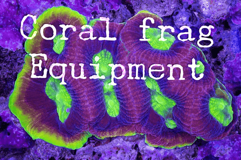 Coral Fragging Equipment