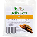 Phyto Plus Reptile Jelly Pots - Phyto Plus