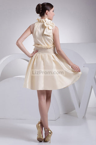 products/Champagne-Fit-And-Flare-Short-Dress-WIth-Bow-_2_541.jpg