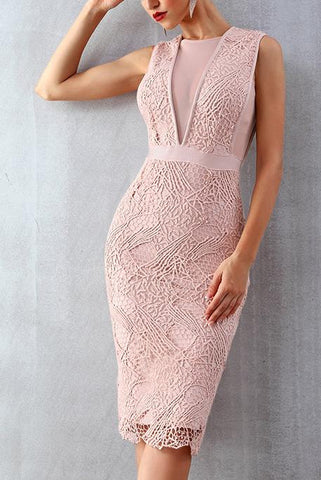 products/Pink-Lace-Sleeveless-Bandage-Party-Dress-_2.jpg