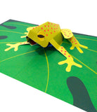 Frog 3D Pop-up card