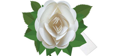 Simply a Rose White 3D Pop-up Card