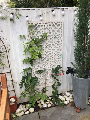 Alhambra Medium Garden Screen - Cream - 4ft x 2ft