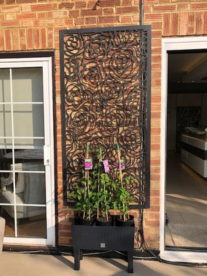 Cream Hana Garden Screen - 6ft x 3ft