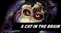 A Cat In The Brain Clothing And Collectibles At Horrormerch.com