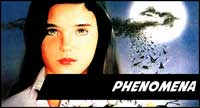 Phenomena Clothing Items And Collectibles