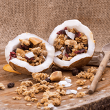 Granola Cranberry Rocks - Made in Natural