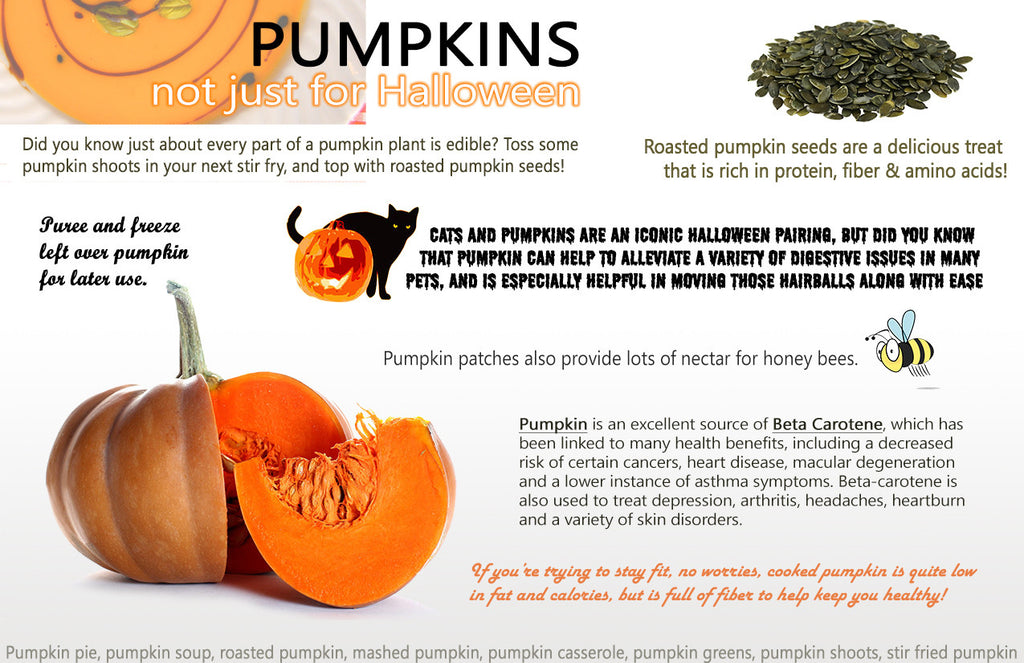 PUMPKINS - not just for Halloween