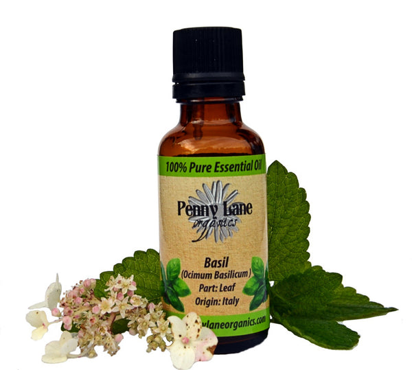 Basil (Sweet) Essential Oil 30 Ml-Penny Lane Organics