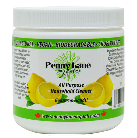 Natural All Purpose Cleaning Paste-Penny Lane Organics