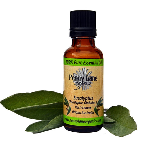 Eucalyptus Essential Oil 30 ML-Penny Lane Organics
