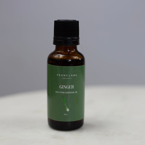 Ginger Root Essential Oil 30 ML-Penny Lane Organics