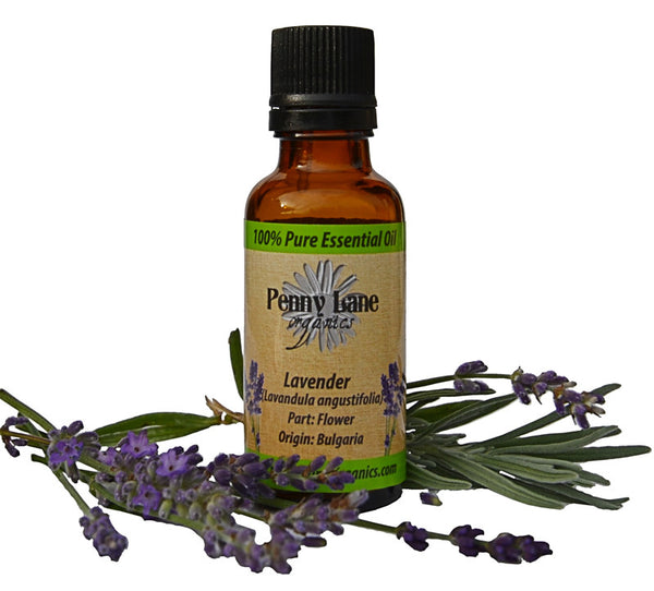Lavender Essential Oil 30 ML-Penny Lane Organics