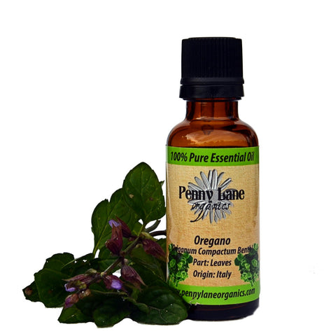 Oregano Essential Oil 30 ml-Penny Lane Organics