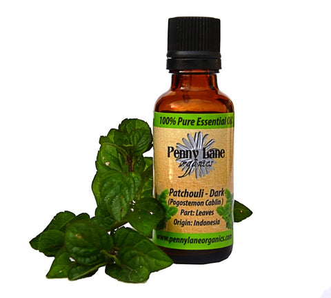 Patchouli Dark Essential Oil 30 ml-Penny Lane Organics