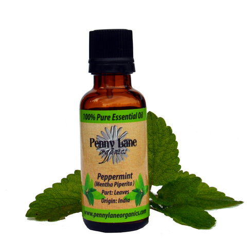 Peppermint Supreme Essential Oil 30 ml-Penny Lane Organics
