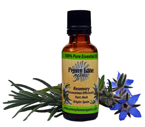 Rosemary Essential Oil 30 ml-Penny Lane Organics
