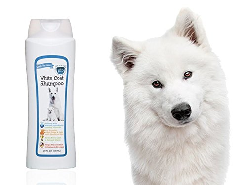 Pet in a Bag (PIB) 20oz. 2 in 1 White Coat Shampoo - Natural Ingredients