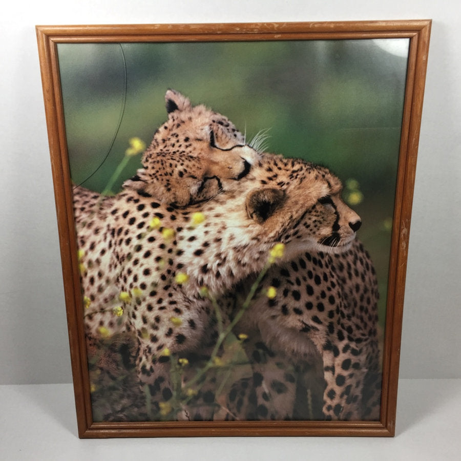 "17 x 21"" Framed Wall Art Photography Cheetah Picture Print"