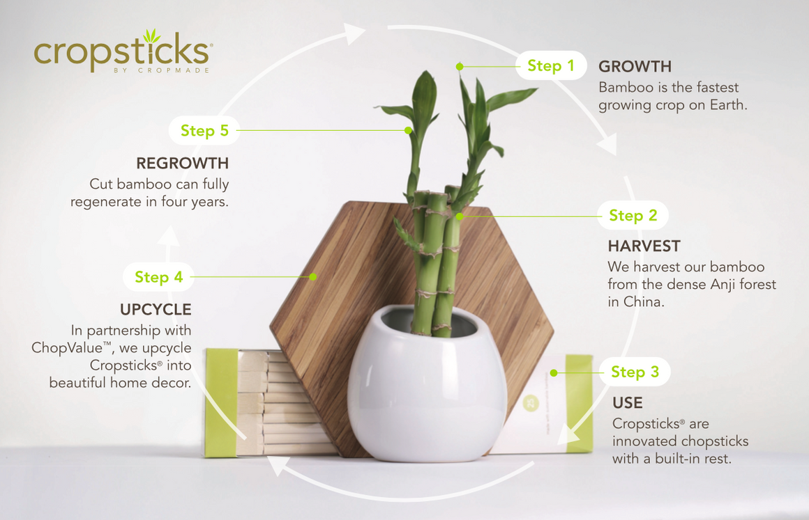Cropmade® Full Circle Sustainable Planter Bundle
