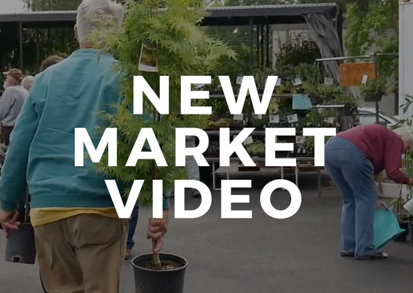 Market Video by Ben Collins