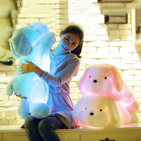 Light Up Dog Plush Toy