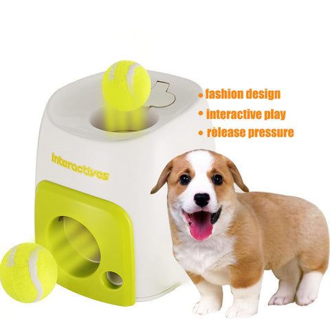 Ball Machine for  Dog