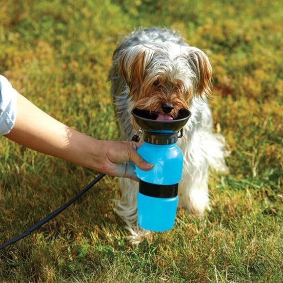 Portable Outdoor Pet Dogs Drinking Water Bottle