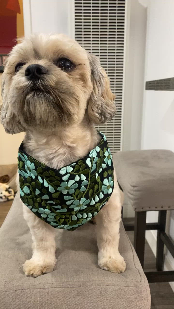 Green and Black Dog Bandana