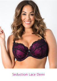 Seduction Lace Demi