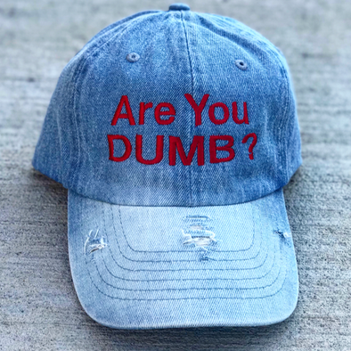 Are You Dumb? Denim Hat