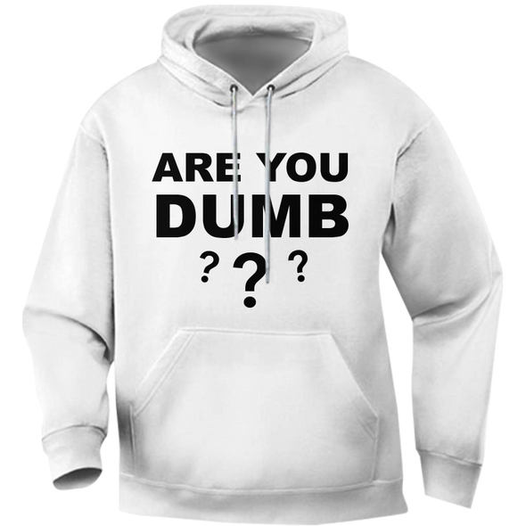 Are You Dumb??? Hoodie